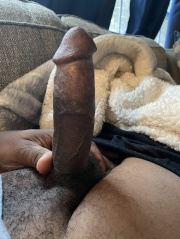 Normal Size Black Cocks